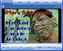 MS-13 Gang Webinar Facilitator Training